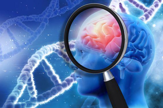 L'apport des Neurosciences peut-il aider à la prise de Décision ? Le Dr Anselem nous répond...