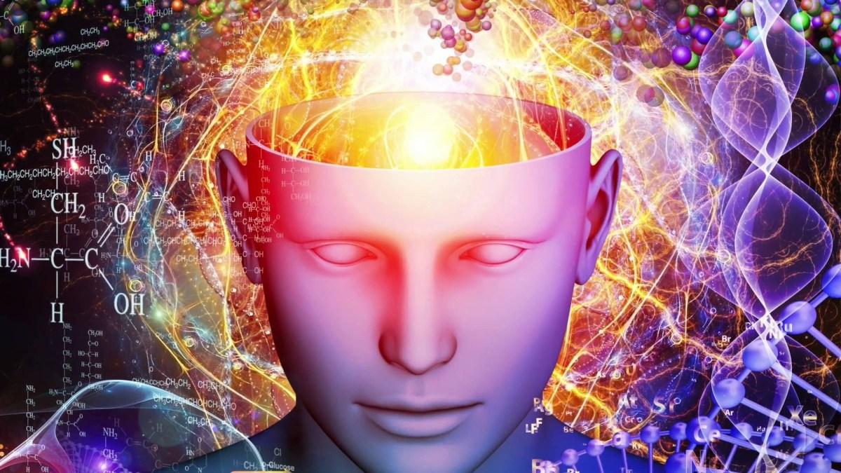 """Comment votre Cerveau peut-il vous aider à prendre de """"bonnes résolutions"""" ?"""