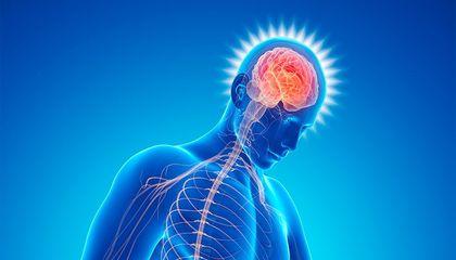 """Approche psychosomatique de la Douleur Chronique : quand le """"stress"""" se décharge sur le corps... (Partie 2/4)"""