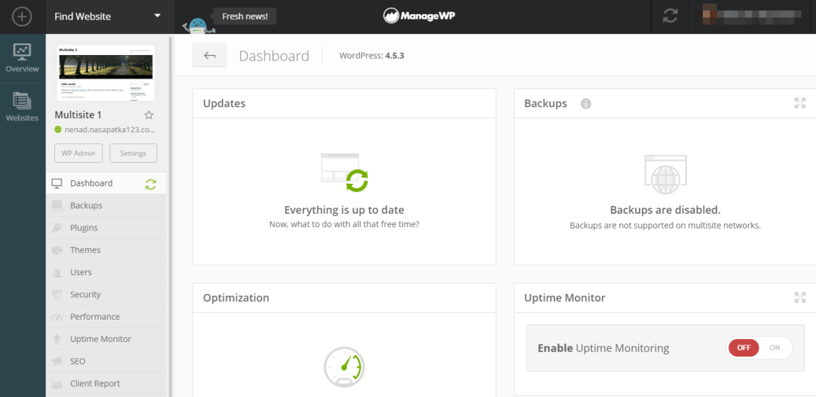 Adding a multisite network to ManageWP.