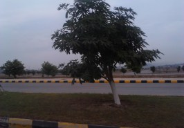 Gulberg-Residencia-Islamabad-Pictures-87