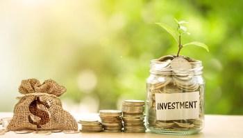 Investasi Aman Untuk Pemula