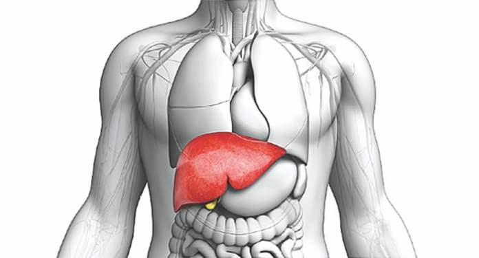 top liver cleaning foods you should take everyday