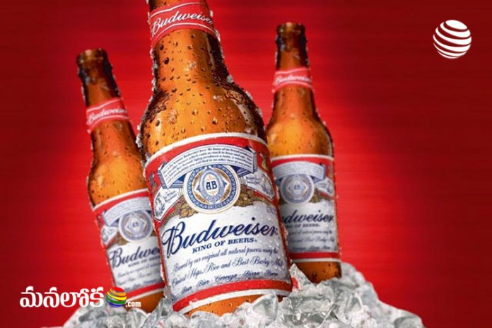 fact check does budweiser beer contains urine