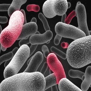 Kontaktlēcu šķidrums likvidē baktērijas