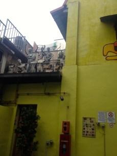 A strange sight in the Arab Quarter