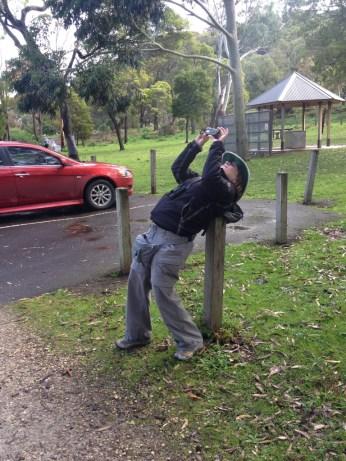 Serious commitment to that koala photo
