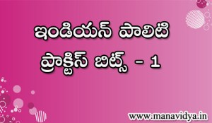 indian polity practice bits in telugu