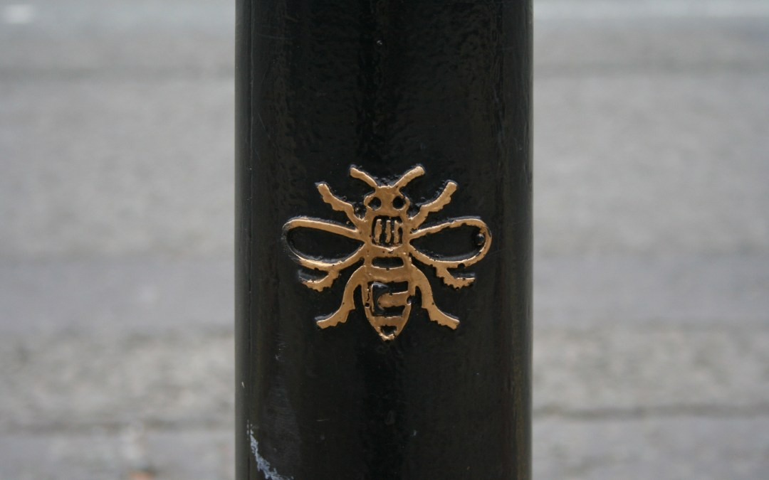 Bees, Bins and Bollards