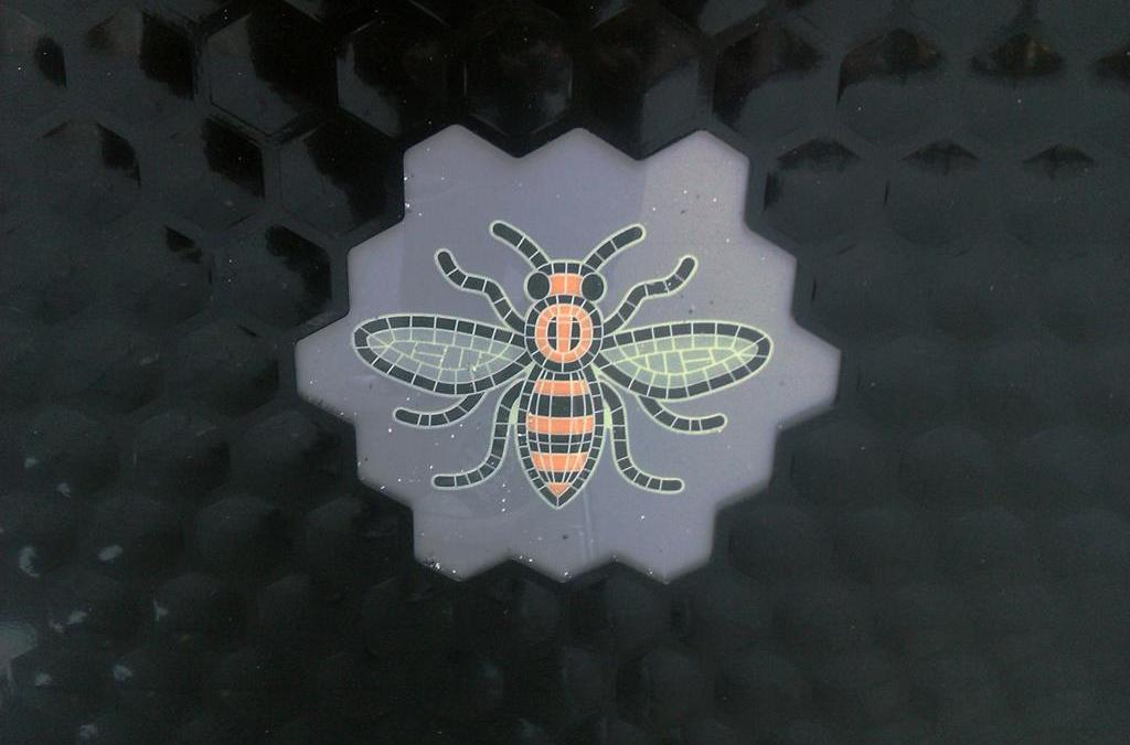 Manchester City Council to make Bee available for use