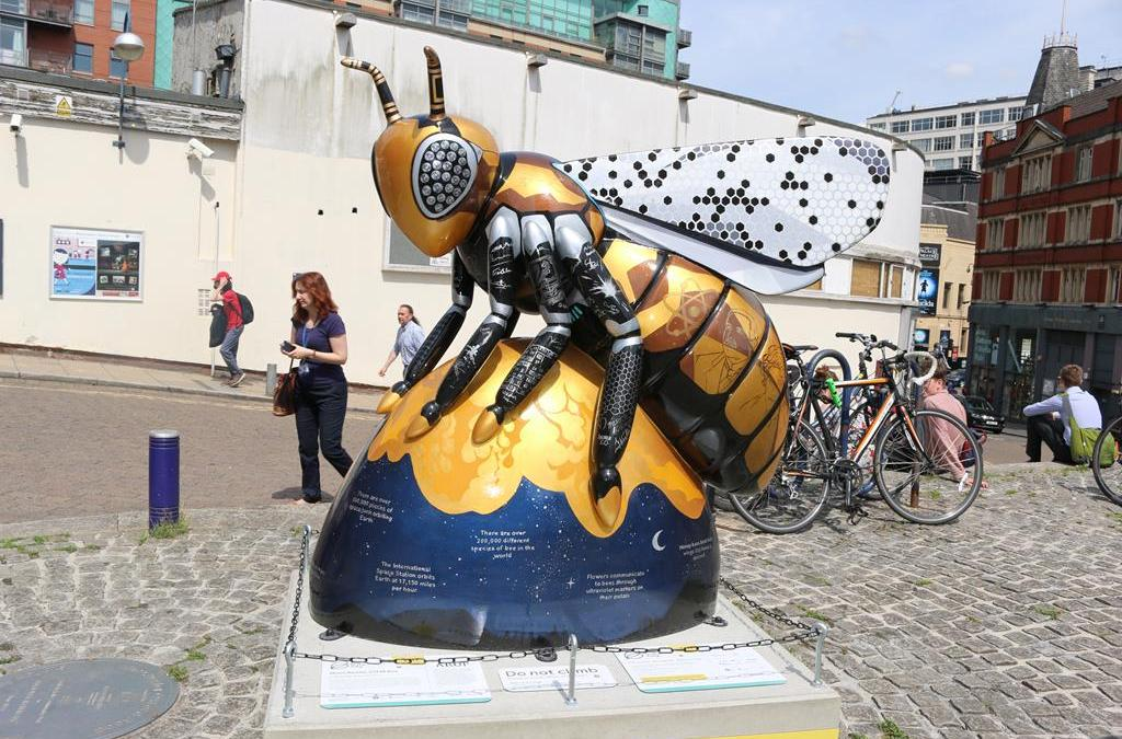 STEM Bee – A Q&A with artist Kelly Stanford