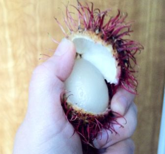 Inside the rambutan.