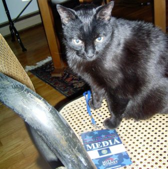 Charlie, the black cat, plays with the Romney laminated press pass.