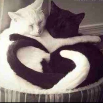 Relationships require a balance of same and different, yin and yang, honesty and acceptance.