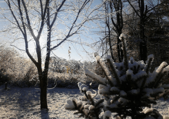 Early winter scene from Greenville, NH.