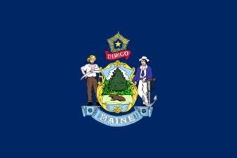 ME flag (Source - Wikipedia)