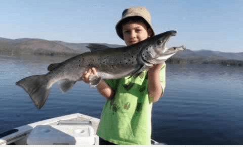 Free fishing day is June 6.