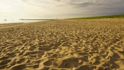 Scusset Beach 086