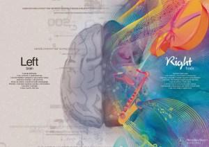 Emisferi del cervello umano