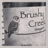 Nice owl, bad font