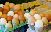Brown's Butchers - Colourful eggs
