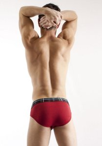 2(X)ist Tartan No-Show Brief