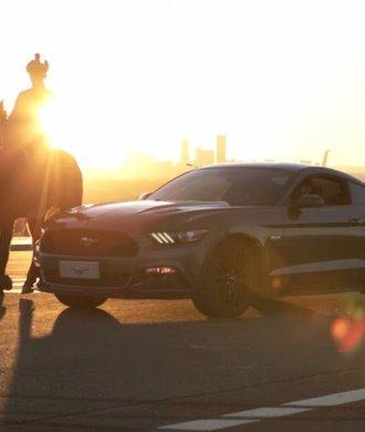 Ford Mustang Year of the Horse Ordos Vaughn Gittin Jr. Drift Qualm Sonnenuntergang Pferd Silhouette Muscle Car Power