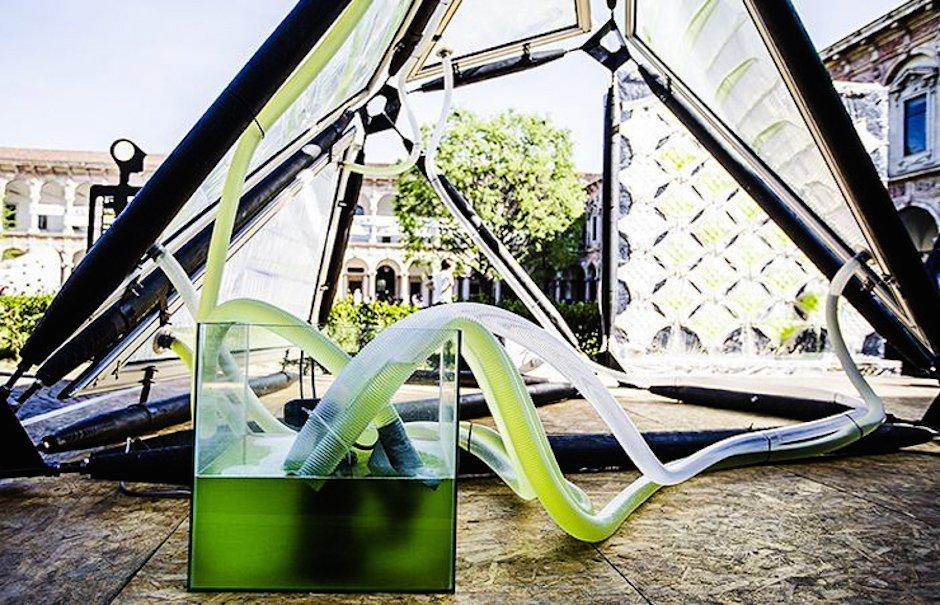 Urban Algae Canopy Project Milan EXPO Milano 2015 Algen Energie Strom Sauerstoff Schattenflächen transparent Bedachung