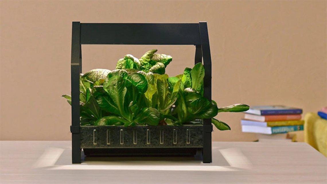 IKEA Krydda Gartenkit Pflanze LED Licht Kasten