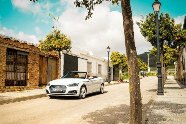 Audi A5 Cabriolet Andalusien Spanien Orangenbäume Allee Städtchen Spanien Gletscherweiß Front Cabrio offen fahren Sommer blauer Himmel Katzen