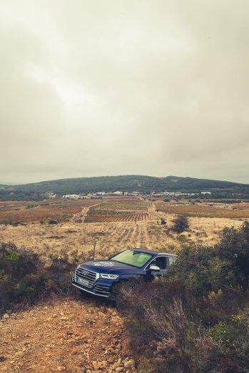 Audi SQ5 Acker Feldweg