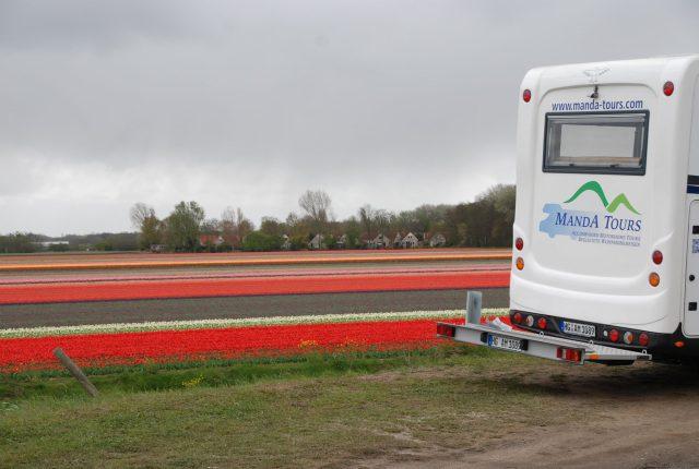 Flower fields springtime in holland escorted motorhome tour