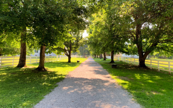 Family Activities at Shaker Village of Pleasant Hill in KY