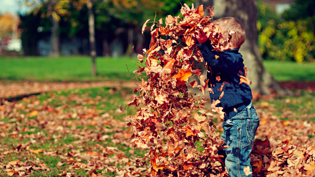mn Bucket List for Preschoolers & Families