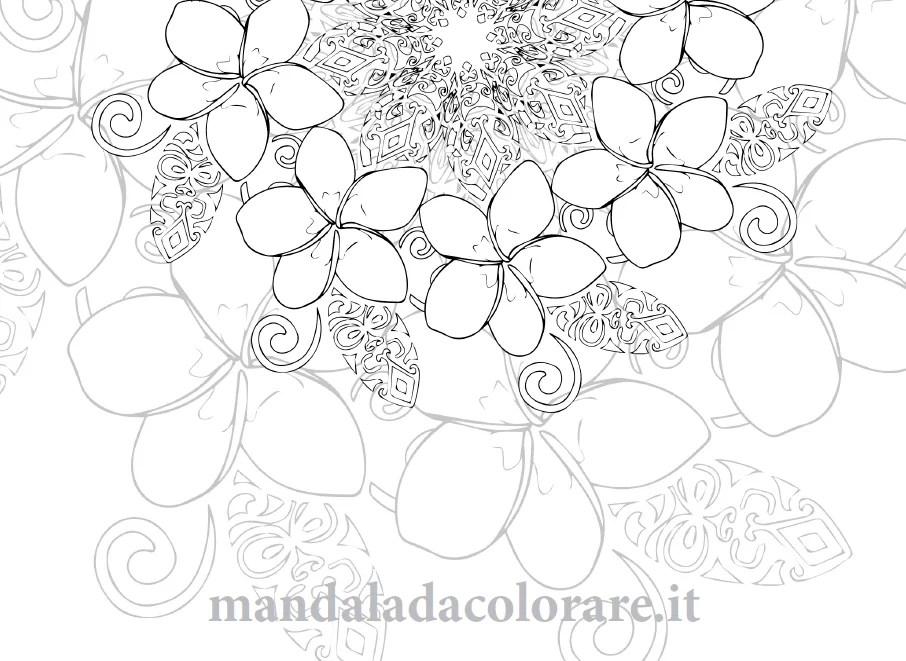 Mandala Da Colorare Dal Tempio Di Uluwatu Alle Scimmie Di Ubud