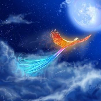 luna-i-ptica