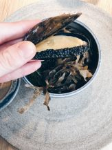 Medium rare blue shell mussel