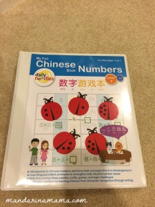 Daily Noodle Numbers Workbook (my laminated version)
