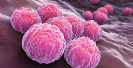 'Important first step' in chlamydia vaccine - The Mandatory Training Group UK -