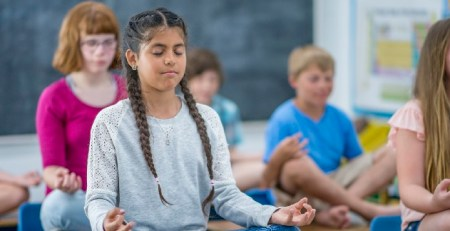 Mental health at school - Meditation and morality, or counselling and clinical care - The Mandatory Training Group UK -