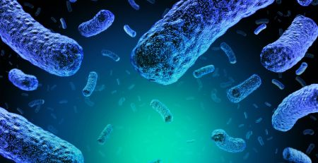 Spain issues international alert after country's biggest ever listeria outbreak - The Mandatory Training Group UK -