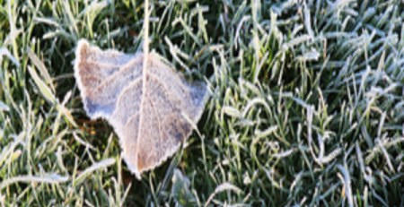 Cold weather health warnings issued by PHE - MTG UK