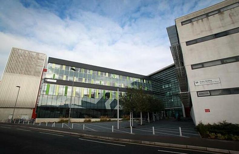 Lower numbers of nurses increase risk of deaths in hospitals - MTG UK