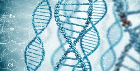 Pilot study to assess potential of whole-genome screening in primary care - MTG UK