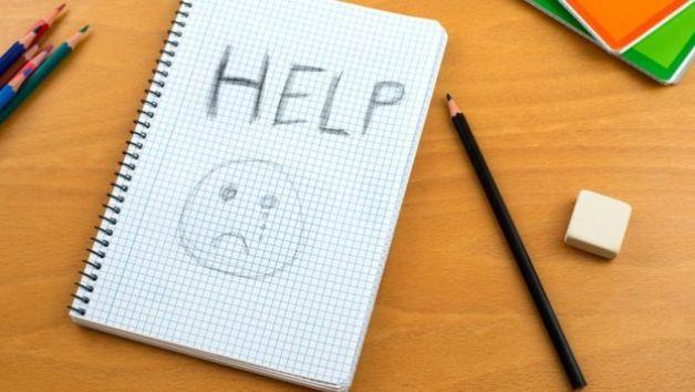 Scottish child mental health services 'cracking at the seams' - The Mandatory Training Group UK -