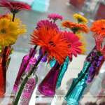 Beautiful coloured single vases