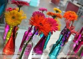 Beautiful coloured single vases