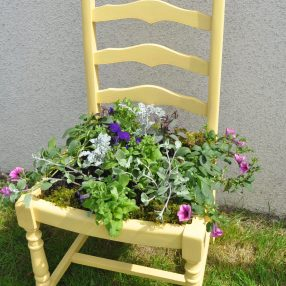 Yellow Plant Chair