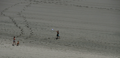 Ngarunui Beach Raglan