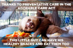 Adorable Care Act Preventative Care